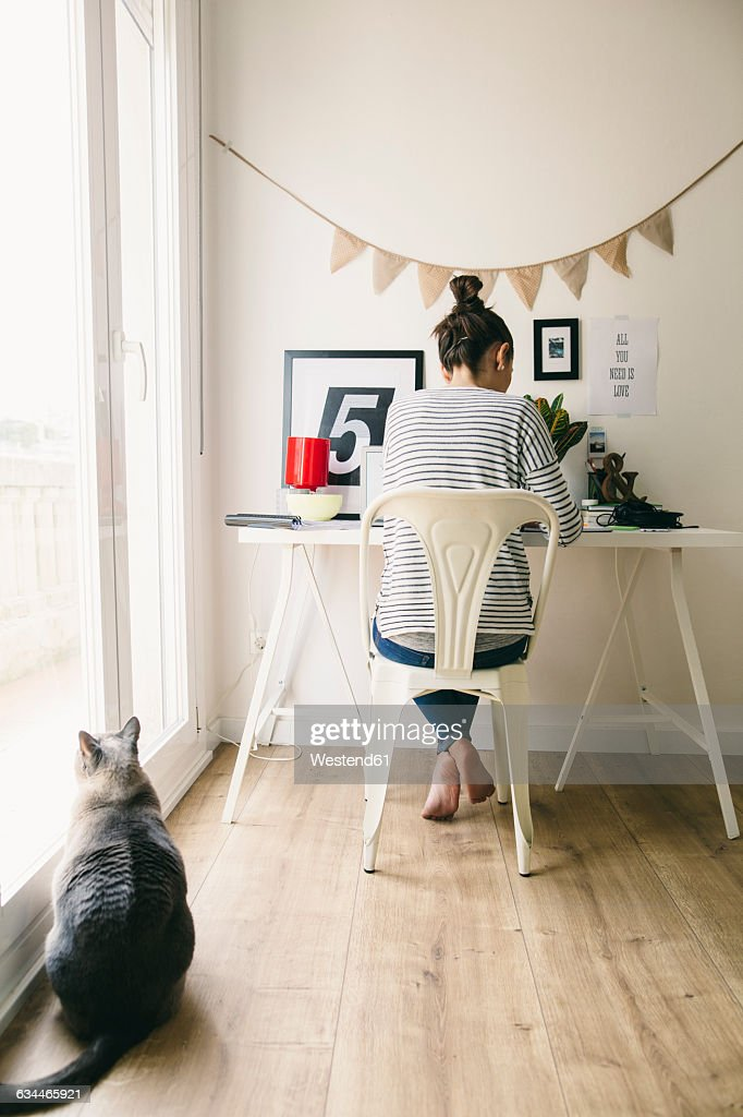https://media.gettyimages.com/photos/woman-working-in-home-office-with-cat-looking-out-of-window-picture-id634465921