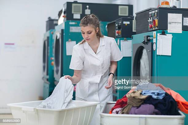 woman working in laundry - sigrid gombert 個照片及圖片檔