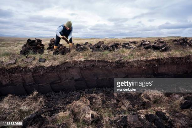 woman working in peat bog stacks peat to dry - cutting stock pictures, royalty-free photos & images
