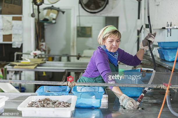 Woman working in seafood processing plant
