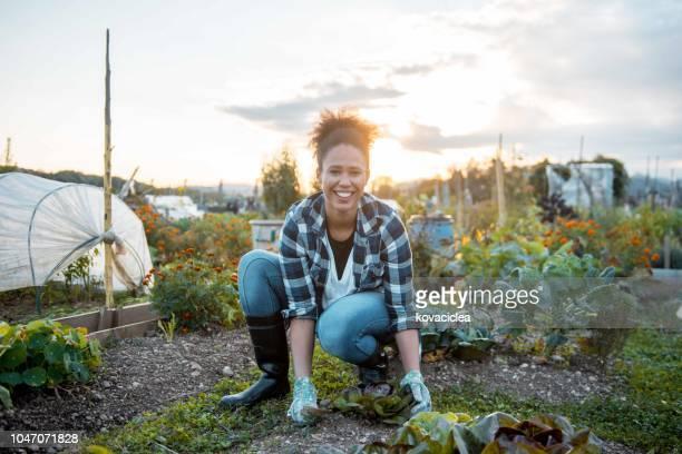 庭での作業とカメラ目線の女 - 造園師 ストックフォトと画像