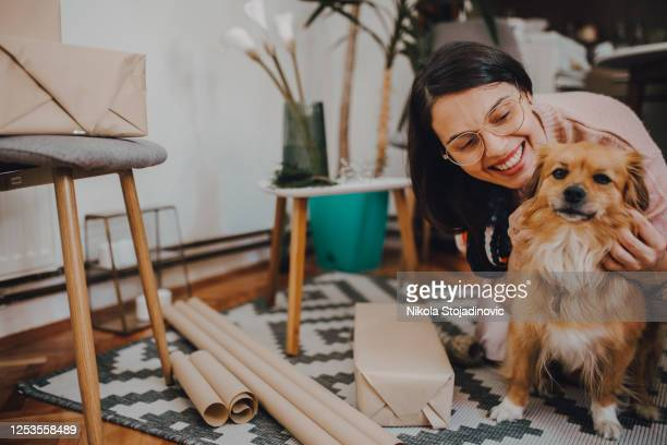woman wrapping eco gifts - dog knotted in woman stock pictures, royalty-free photos & images