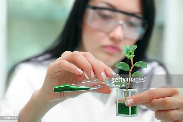 Woman-biologist in laboratory