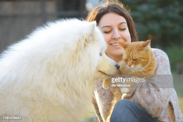 mujer, perro y gato (verano) - felino fotografías e imágenes de stock