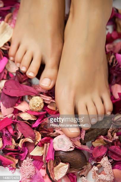 woman's bare feet in potpourri - beautiful bare women photos et images de collection