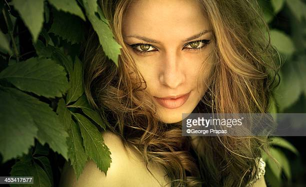 woman's beautiful face surrounded by green leaves - hazel eyes stock pictures, royalty-free photos & images
