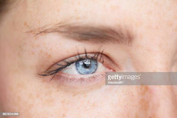 woman's blue eye, close-up - sarda - fotografias e filmes do acervo