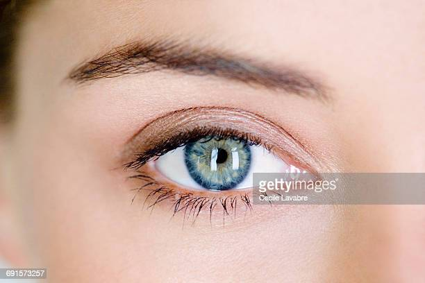 woman's eye, close-up - eyebrow stock pictures, royalty-free photos & images