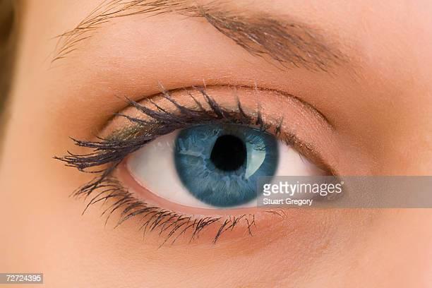 woman's eye, close-up, portrait - olhos azuis - fotografias e filmes do acervo