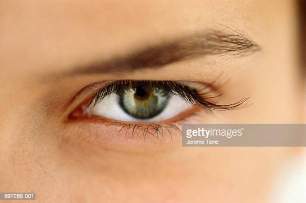 woman's eye, open, close-up - green eyes stock pictures, royalty-free photos & images