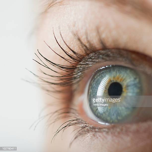 woman's eye - human body part stock pictures, royalty-free photos & images