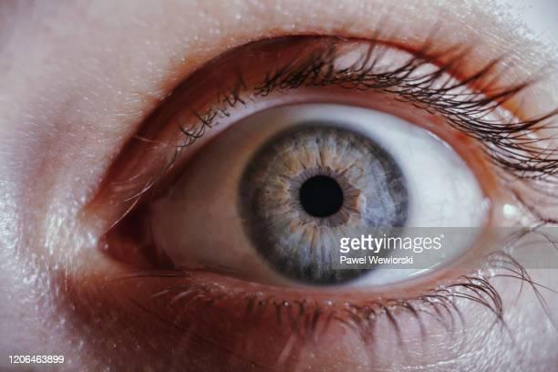 woman's eye - auge stock-fotos und bilder