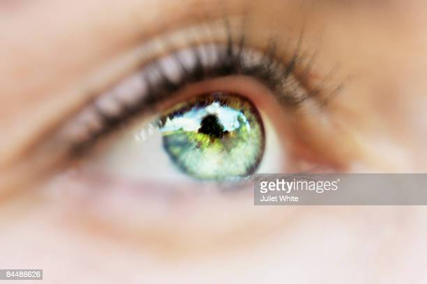 woman's eye - green eyes stock pictures, royalty-free photos & images