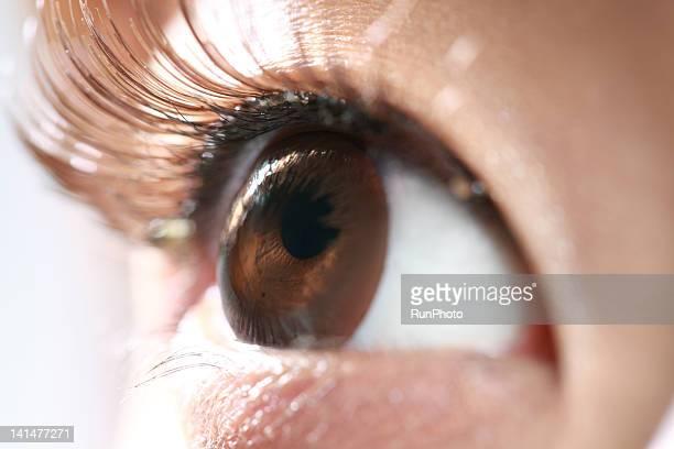woman's eye wearing false eyelashes,close-up - つけまつげ ストックフォトと画像