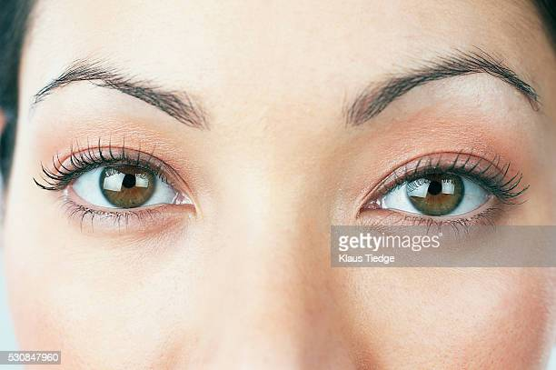 woman's eyes - hazel eyes stock pictures, royalty-free photos & images