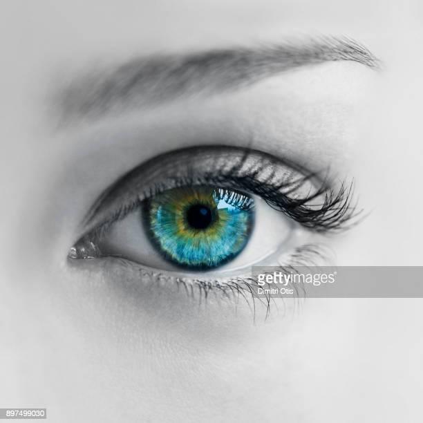 woman's face in black and white with blue iris in colour - iris ojo fotografías e imágenes de stock
