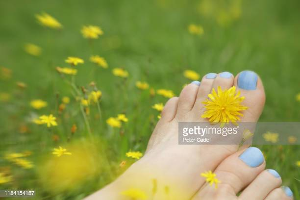 womans feet in flower meadow - grass stock pictures, royalty-free photos & images