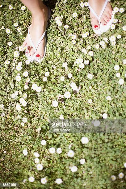 Womans feet on flowered grass