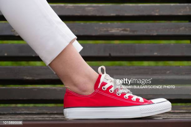Woman's foot on park bench