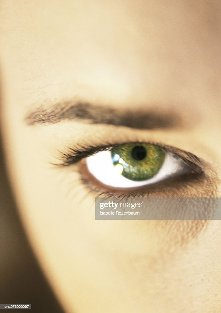 Woman's green eye and eyebrow, extreme close up. : Stockfoto