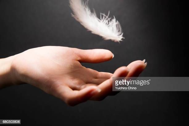 Woman's hand catching a feather