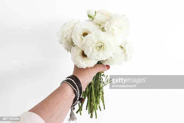 Woman's hand holding a bouquet of white ranunculus flowers