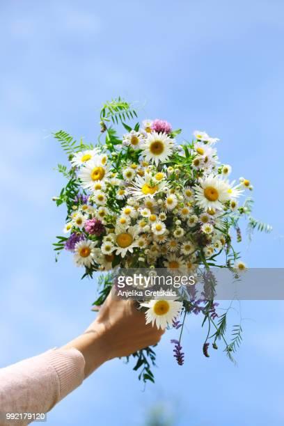 woman's hand holding a bouquet of wildflowers against blue sky background - bouquet de fleurs photos et images de collection