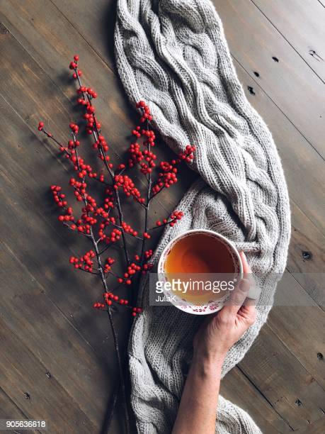 womans hand holding a cup of herbal tea with berries and a knitted scarf - herbal tea stock pictures, royalty-free photos & images