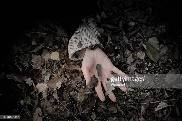 woman's hand on forest floor - suicide stock pictures, royalty-free photos & images