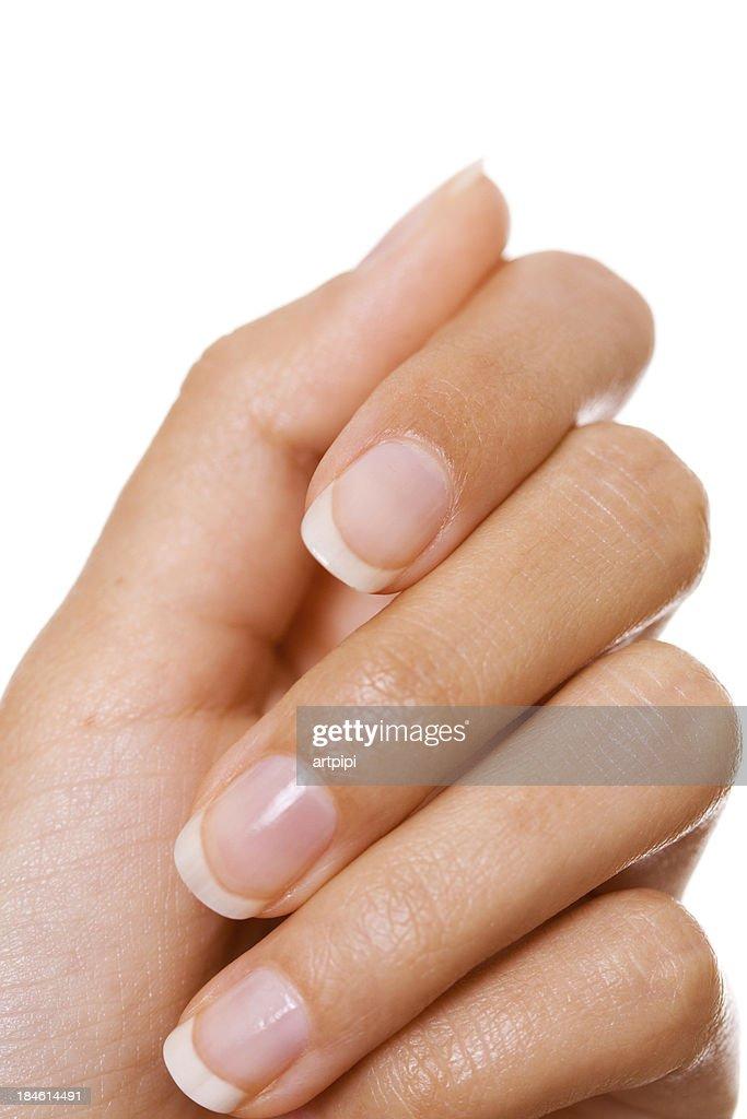 woman's hand : Stock Photo