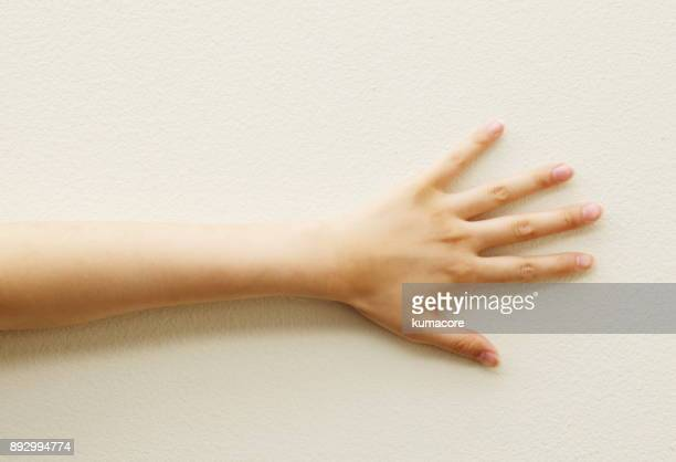 woman's hand - human arm stock pictures, royalty-free photos & images
