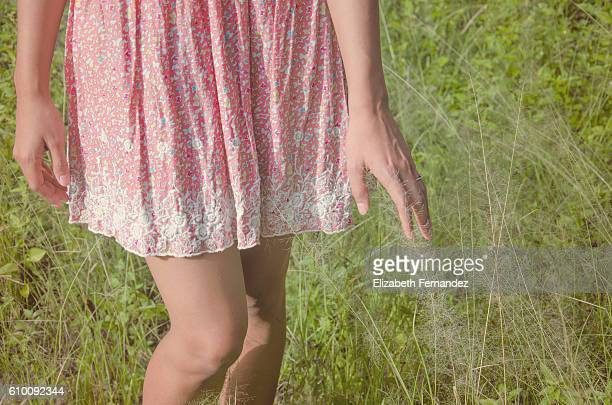 Woman's hand through field
