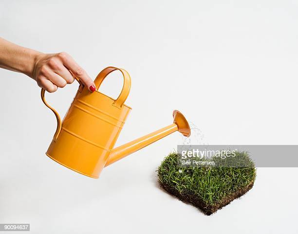 woman's hand, watering heart of grass - watering stock pictures, royalty-free photos & images