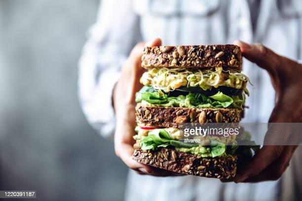 woman's hands holding a large vegetarian sandwich - bean sprout stock pictures, royalty-free photos & images