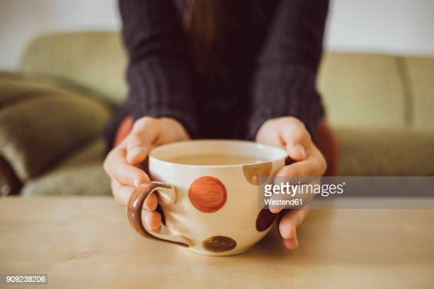 Womans hands holding tea cup, close-up