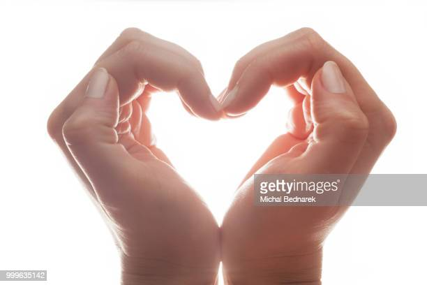 Woman's hands make a heart shape on white background, backlight. Love