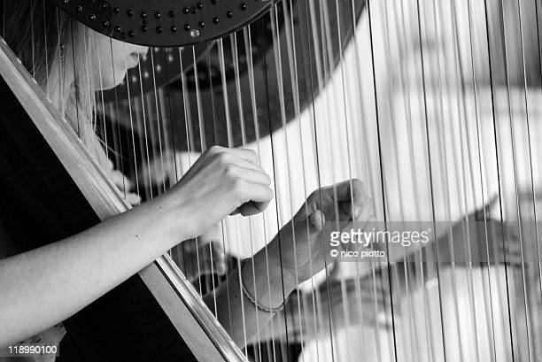 Woman's hands plucking strings of harp, close-up