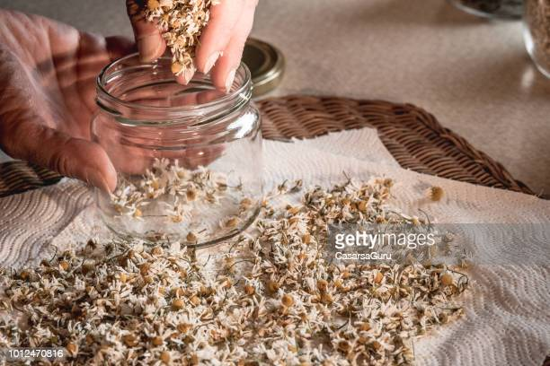 Woman's Hands Putting Dried Camomile Flowers In A Jar