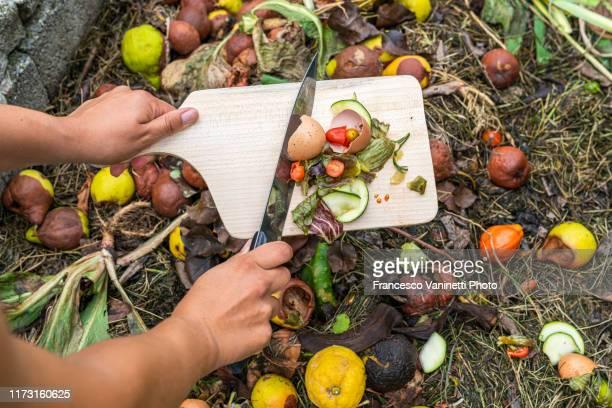 woman's hands throwing food scraps in the compost heap. - humus photos et images de collection