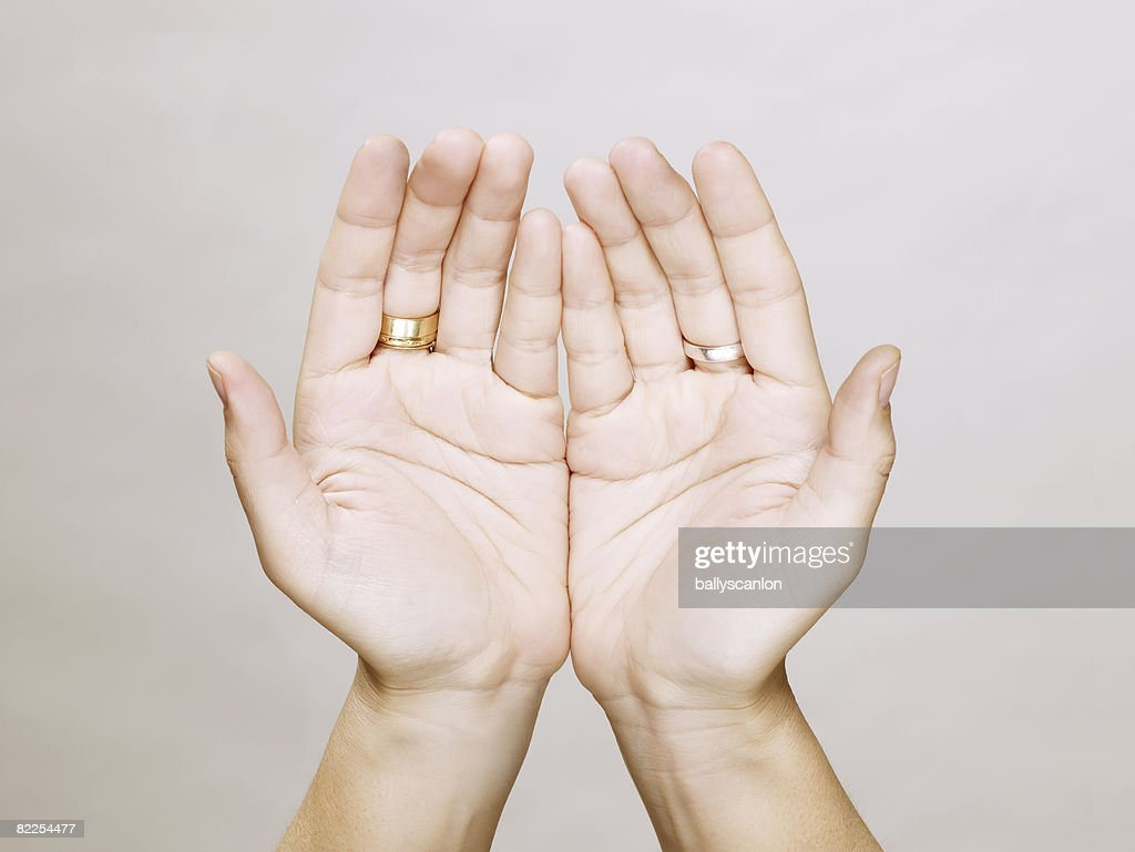 Woman's hands together, open : Stock Photo