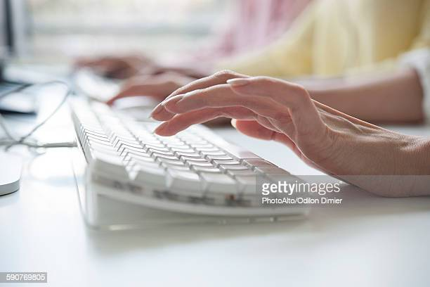 womans hands typing on a computer keyboard - input device stock photos and pictures