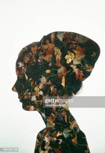 A woman's head with meadow with leaves superimposed on it 1978