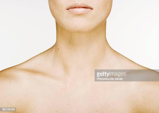woman's lower face, neck and bare upper chest - beautiful bare women fotografías e imágenes de stock