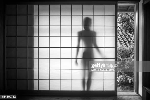 woman's silhouette behind a japanese shoji screen - silueta mujer desnuda fotografías e imágenes de stock