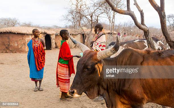 Women and cattle in Maasai village. Kenya
