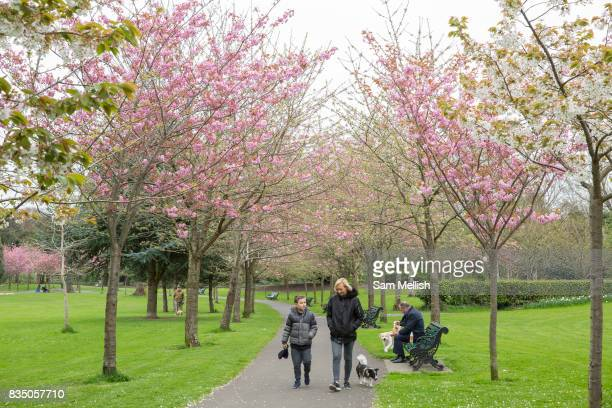 A women and child walk a dog in Herbert Park on 06th April 2017 in Dublin Republic of Ireland Dublin is the largest city and capital of the Republic...