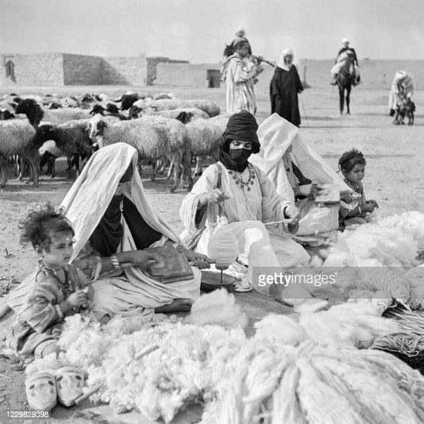 Women and little children of the Ouled Bou Sbaa tribe, a Moorish tribe of nomads, work at fraying, carding and spinning the wool that has just been...