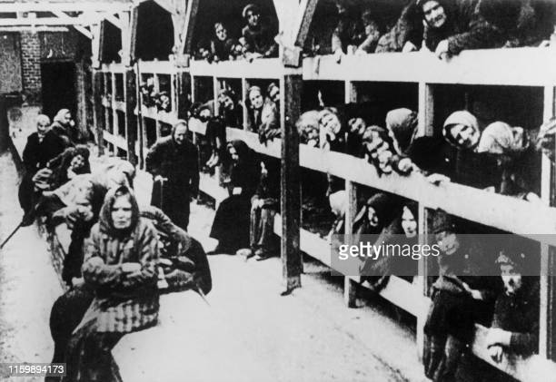 Women are pictured in their barrack after the liberation in January 1945 of the Oswiecim concentration camp. - The Auschwitz camp was established by...