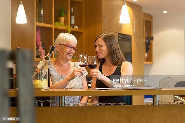 women at counter in wine bar making a toast - sigrid gombert imagens e fotografias de stock