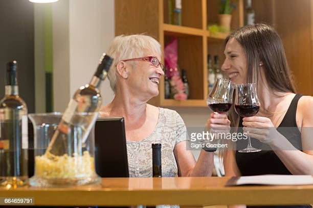 women at counter in wine bar making a toast - sigrid gombert stock pictures, royalty-free photos & images